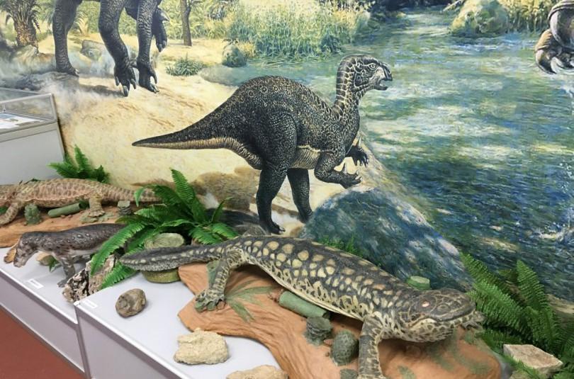 Иностранцевии, скутозавры и котлассии